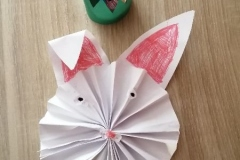 Julka-Karaś-królik